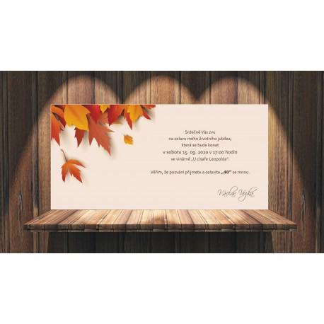 Pozvánky NP01