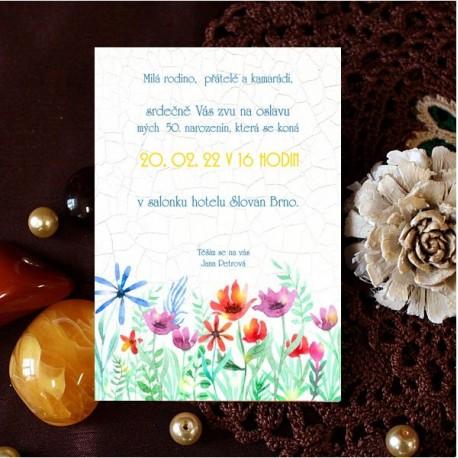 Pozvánky NP02
